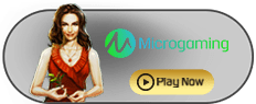 Agen Microgaming slots